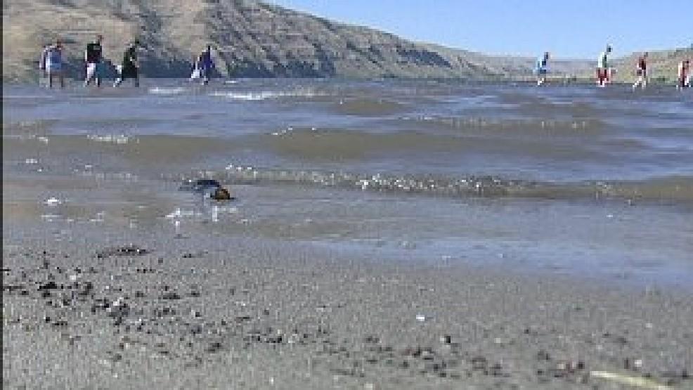 Illia Dunes reopen after student volunteers help clean area